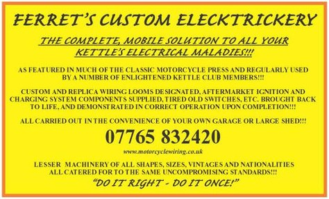 Ferrets Custom Electrics